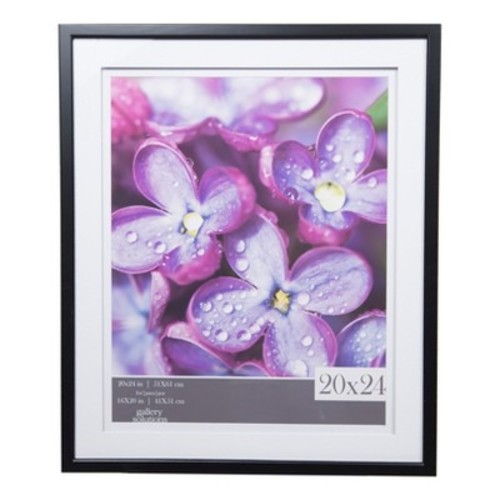 Single Image 20X24 Wide Double Mat Black 16X20 Frame - Gallery Solutions