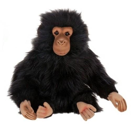 Hansa Junior Chimp