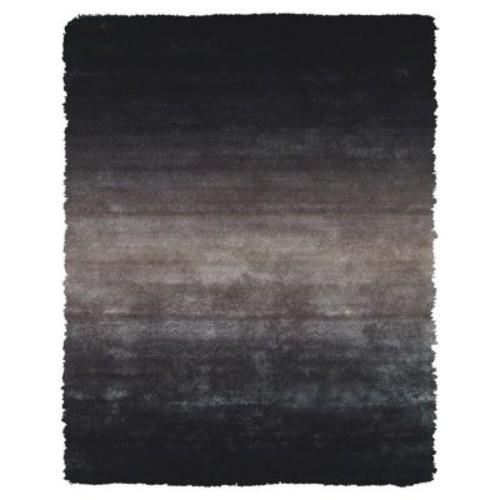 Varick Gallery Sapienza Black Area Rug; 2' x 3'4''