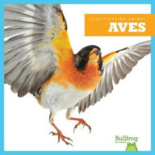 Aves / Birds