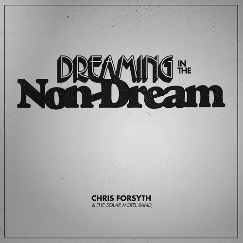 Dreaming in the Non-Dream [CD]