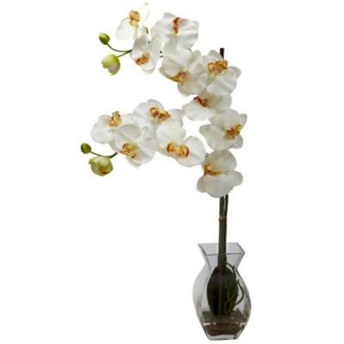 Nearly Natural Phalaenopsis Orchid with Vase Arrangement in Cream