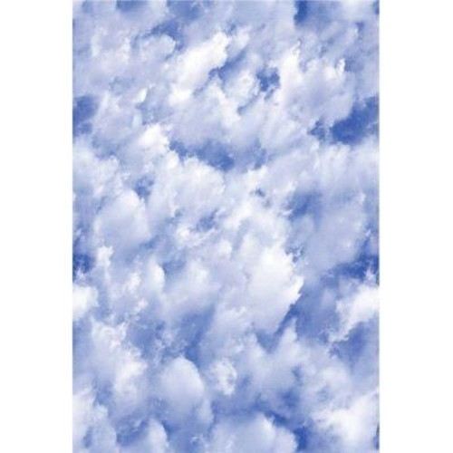 Artscape 24 in. x 36 in. Clouds Decorative Window Film