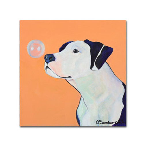 'Fascination' by Pat Saunders-White Framed Painting Print on Wrapped Canvas