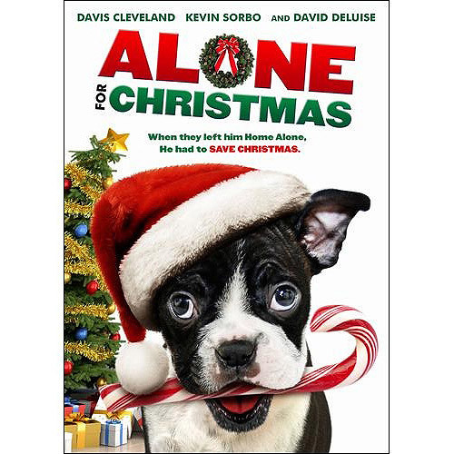 Alone for Christmas [DVD] [2013]