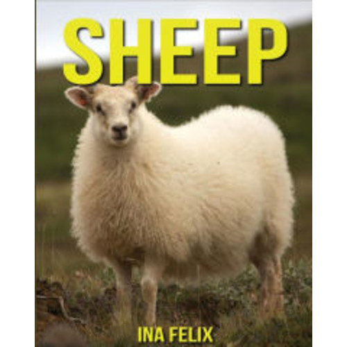 Sheep: Children Book of Fun Facts & Amazing Photos on Animals in Nature - A Wonderful Sheep Book for Kids aged 3-7