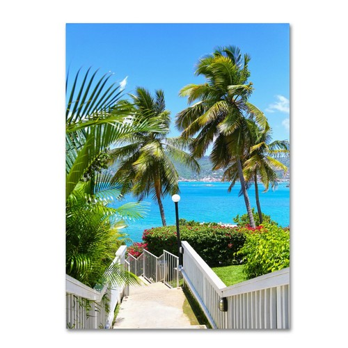 Trademark Fine Art CATeyes 'Virgin Islands 3' Canvas Art 14x19 Inches