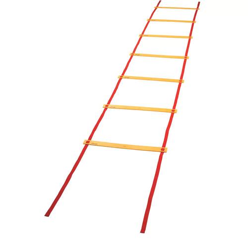 Champion Economy Agility Ladder ( AGLXX )