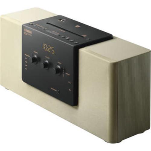 TSX-B141 Desktop Audio System (Champagne G