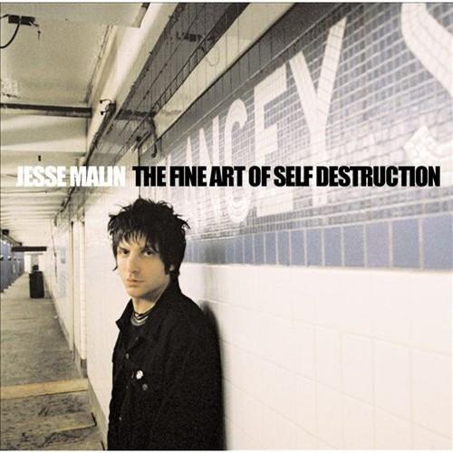 The Fine Art of Self Destruction [CD]