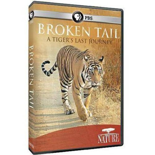 Nature: Broken Tail - A Tiger's Last Journey [DVD] [English] [2011]