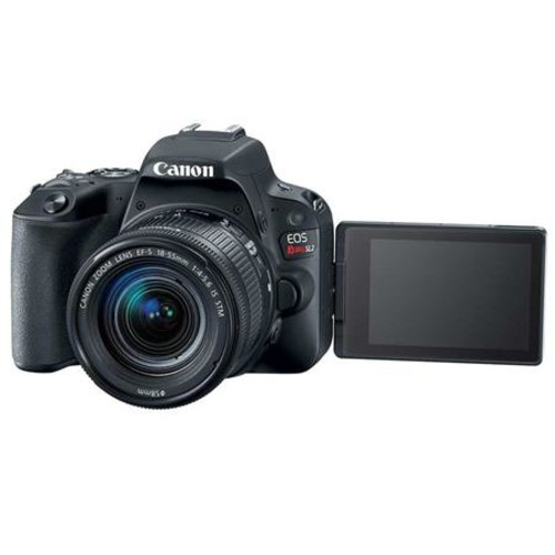 Canon EOS Rebel SL2 DSLR with EF-S 18-55mm f/4-5.6 IS STM Lens - Black