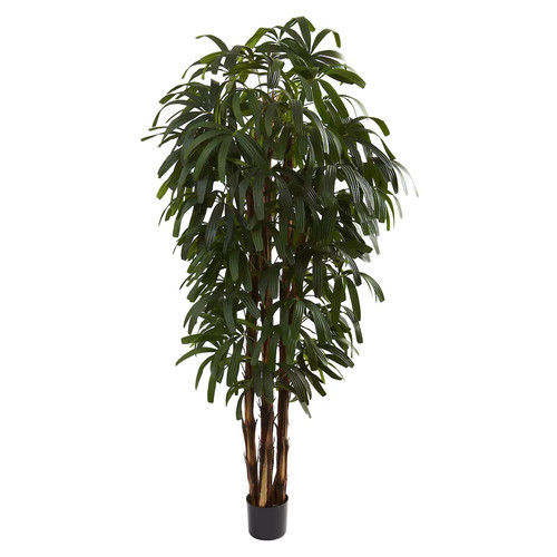 nearly natural 6-ft. Potted Raphis Tree