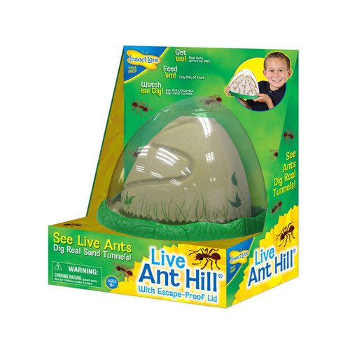 INSECT LORE Learning & Educational Toys INSECT LORE AntHill Living Ant Habitat