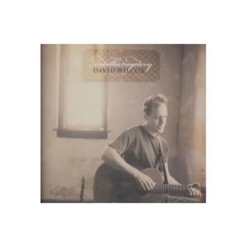 David Wilcox - Into the Mystery [CD]
