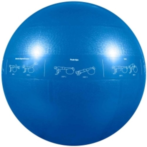 GoFit Pro 55 cm Exercise Ball