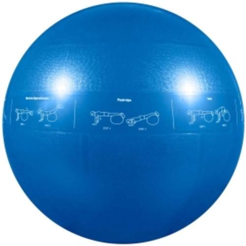 GoFit Pro Ball 55 cm