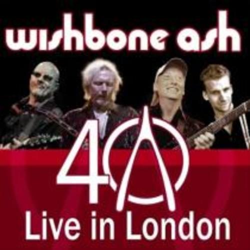 40th Anniversary Concert: Live in London [LP] - VINYL