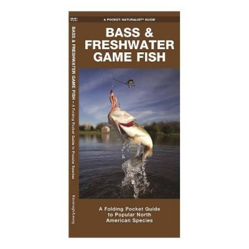 Bass & Freshwater Game Fish Of North America: A Beautifully Illustrated Folding Pocket Guide to Familiar Species