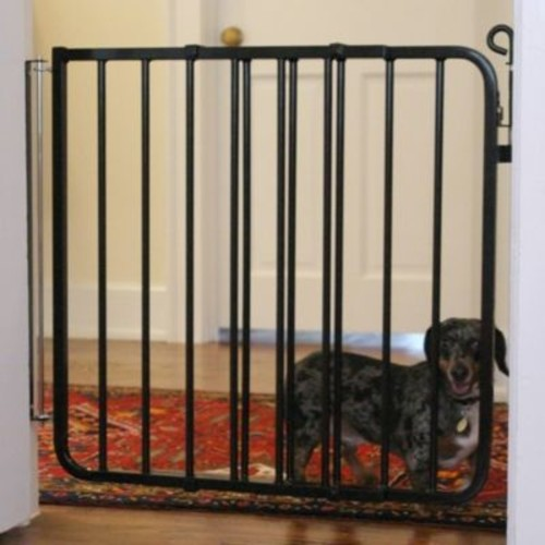 Cardinal Gates Auto-Lock Gate; Black