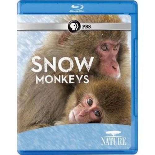 Nature: Snow Monkeys (Blu-ray)