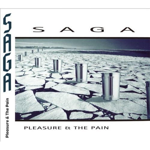 Pleasure & the Pain [CD]