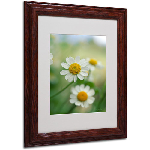 Trademark Fine Art 'Chamomile' Matted Framed Art by Kathy Yates