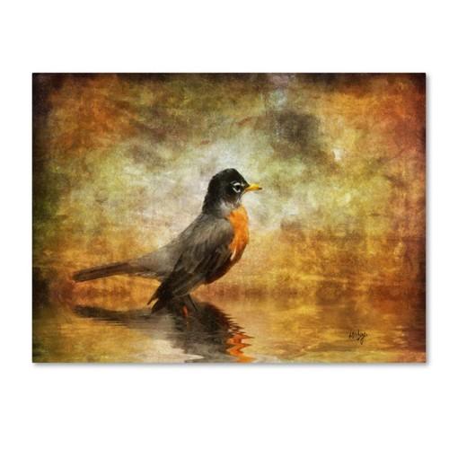 Trademark Fine Art 'The Robin' 22