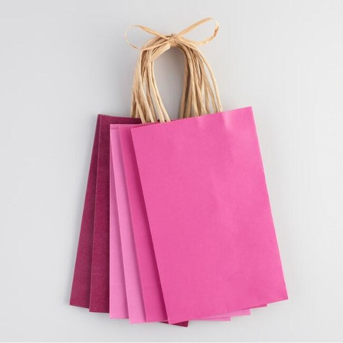 Small Pink Kraft Gift Bags Set of 6