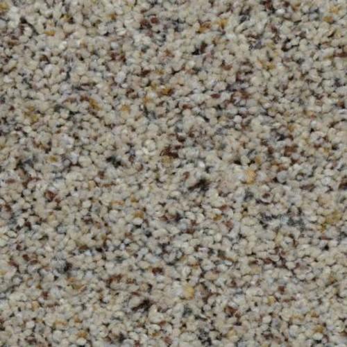 Home Decorators Collection Beach Club I - Color Lowden Texture 12 ft. Carpet