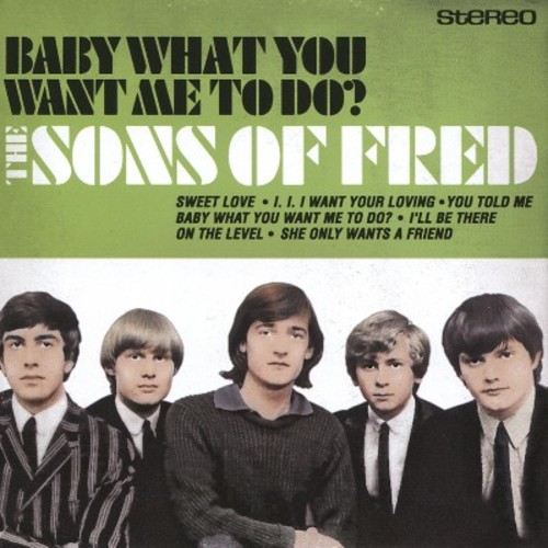 Baby What You Want Me to Do [CD]