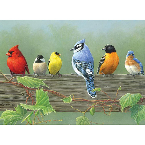 Reeves 12-Inch by 16-Inch Paint by Number Artists Collection, Rail Birds [Rail Birds]