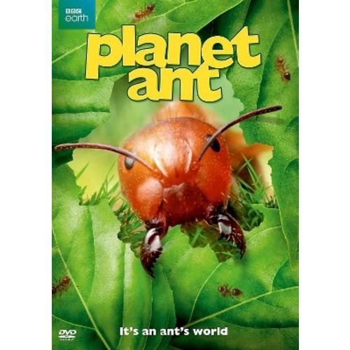 Planet Ant (DVD)