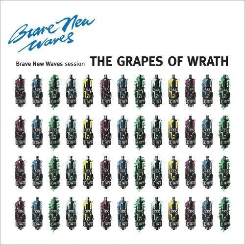 Brave New Waves Session [CD]
