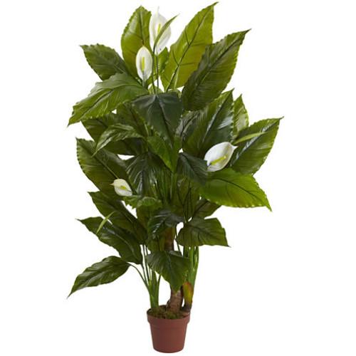4.5 Spathyfillum Plant Real Touch