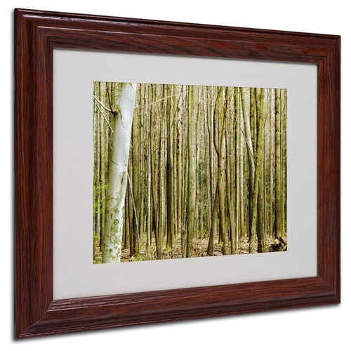 Kathie McCurdy 'Forest Floor Spring' Matted Framed Art - 11x14 Inches - Wood Frame