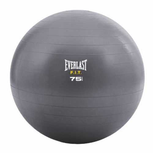 Everlast FIT Stability Ball with Pump - 65cm - Blue