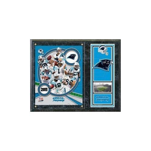 Carolina Panthers 2011 Team Composite Plaque