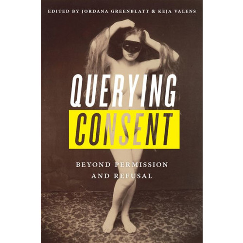 Querying Consent: Beyond Permission and Refusal