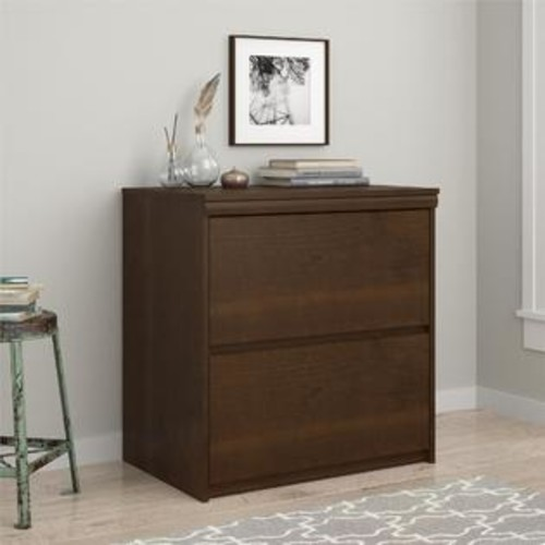 Ameriwood Home 2-drawer Lateral File Cabinet