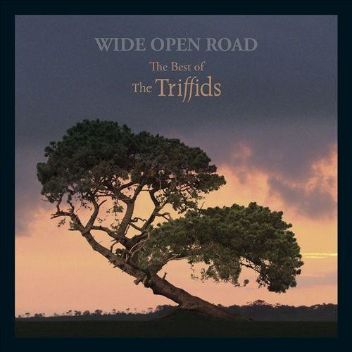 Wide Open Road: The Best of the Triffids [CD]