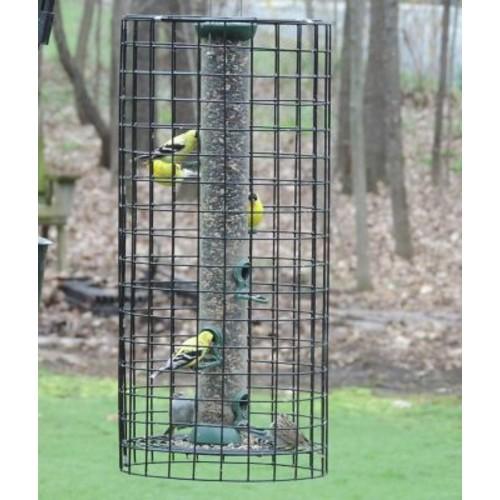 Birds Choice Tube Bird Feeder