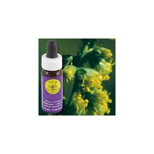 Flower Essence Services Quintessentials Supplement Dropper, Mugwort, 0.25 Fluid Ounce [Mugwort]