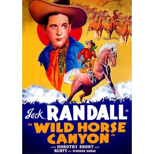 Wild Horse Canyon [DVD] [1939]