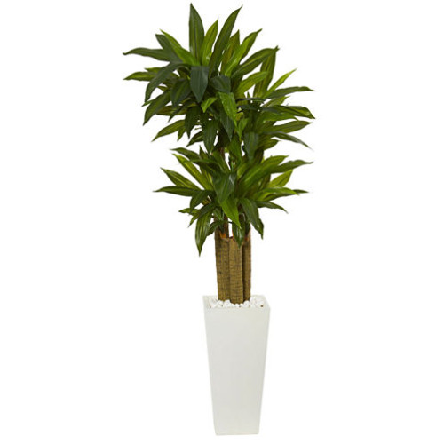 5' Cornstalk Dracaena Artificial Plant in White Tower Planter