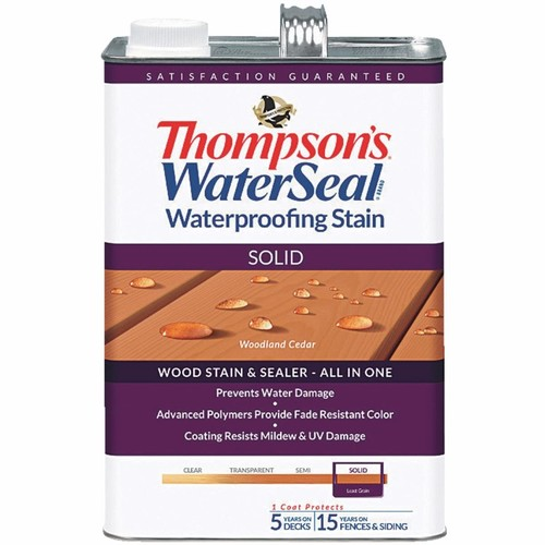 Thompson's WaterSeal Thompsons WaterSeal Solid Waterproofing Stain - TH-043851-16