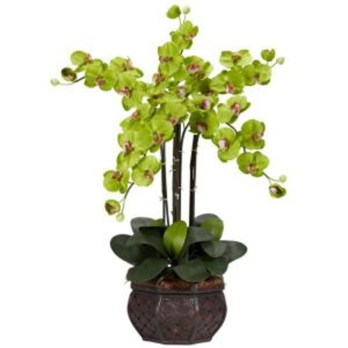 31 in. H Green Phalaenopsis with Decorative Vase Silk Flower Arrangement