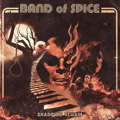 Shadows Remain [CD]