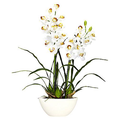 Nearly Natural Cymbidium With White Vase Silk Flower Arrangement JCPenney