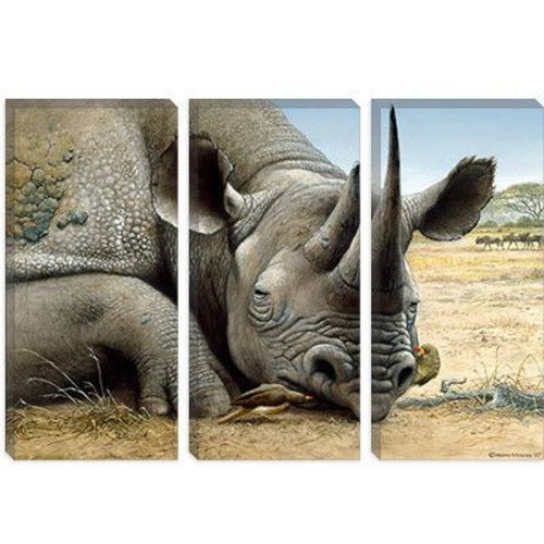 iCanvas 'Black Rhino' by Harro Maass Graphic Art on Canvas; 26'' H x 40'' W x 0.75'' D